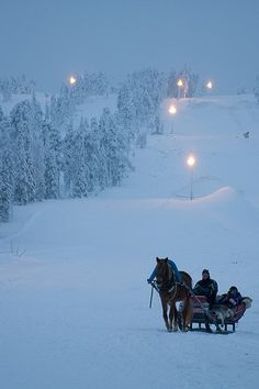 sleigh bells ring are ya listen Walkin in the winter wonder land! Would love to go for a winter sleigh ride! Winter Szenen, I Love Winter, Winter Magic, Winter Christmas, Outdoor Christmas, Winter Night, Christmas Scenes, Christmas Photos, Merry Christmas