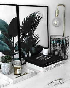 Shared by S i l. Find images and videos about decor, interior and plants on We Heart It - the app to get lost in what you love.