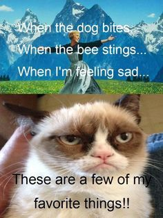 Grumpy cat jokes, grumpy cat quotes, funny grumpy cat quotes, grumpy cat funny, funny grumpy cat …for more humor quotes visit Grumpy Cat Quotes, Funny Grumpy Cat Memes, Cat Jokes, Animal Jokes, Funny Animal Memes, Funny Cats, Funny Jokes, Funny Animals, Cat Puns