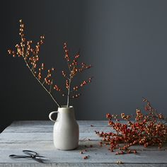 Still life of dried berry branches in a ceramic vase