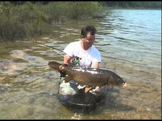 Fly Fishing for Great Lakes Carp