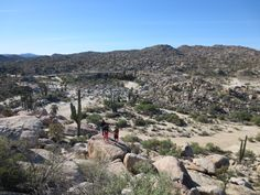 A bus-and-camping road trip through Baja California