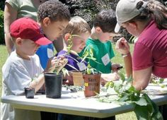 Garden Buds: Red Hearts Raleigh, NC #Kids #Events