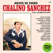 Nieves De Enero, an album by Chalino Sanchez on Spotify