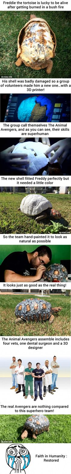 [Warning Strong Graphic] Injured Tortoise Receives World's F.- [Warning Strong Graphic] Injured Tortoise Receives World's First Printed Sh… [Warning Strong Graphic] Injured Tortoise Receives World's First Printed Shell - Cute Funny Animals, Cute Baby Animals, Funny Cute, Animals And Pets, Sweet Stories, Cute Stories, Human Kindness, Wale, Faith In Humanity Restored