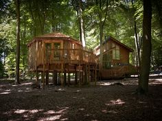 Golden Oak - This is a great vacation spot if you want to take your family and your dog abroad, and if you can afford the price. Located in Hampshire, England, this beautiful tree house can fit up to 10 people. You won't get bored at Golden Oak as there are lots of fun activities for everyone. Because it is considered a luxury treehouse, the cost per night is of at least $1,099 per night. Consider if you have a pampered pooch.  Credit: Forest Holidays