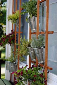 Herb Gardening 518054763386817406 - A basic trellis and a few hanging planters (how pretty are the silver buckets?) turn a basic exterior wall into an elegant vertical garden and the perfect backdrop for outdoor entertaining! Jardin Vertical Diy, Vertical Garden Design, Vertical Planter, Vertical Gardens, Diy Planters, Hanging Planters, Planter Ideas, Hanging Baskets, Garden Planters