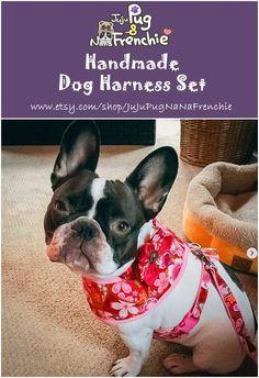 Girl dog harness vest leash set #dogharness #dogcollar #dogleash #Frenchbulldog #Frenchie Dog Collar Boy, Girl Dog Collars, Puppy Collars, Dog Harness, Dog Leash, Pug Accessories, Pink Dog, Red Dog, Bully Dog
