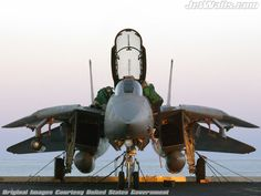 F-14 Tomcat#Repin By:Pinterest++ for iPad#