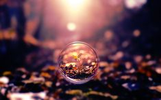 #bubble