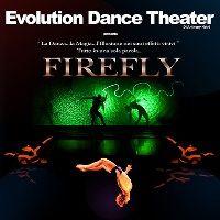 30 aprile - 5 maggio 2013 - FireFly Evolution Dance Theater : danza, teatro fisico, acrobatica, video art al Teatro Nuovo di Milano.