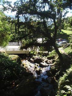 """Fazer trilha com a Priscila na Estrada da Graciosa, Serra do Mar. Trajeto """"Curitiba, Morretes e Antonina""""."""