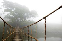 "rope bridge print - Google Search Can also purchase through IKEA $129 Width: 78 ¾ "", Height: 55 """