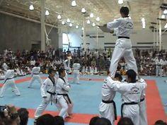 WTF Taekwondo Demo Team