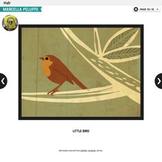 little bird, Marcella Peluffo illustration