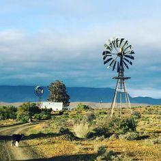 Flower Landscape, Landscape Photos, Landscape Art, Landscape Photography, Art Photography, Farm Windmill, Village Photography, African House, Cape Town South Africa