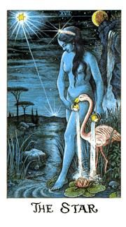 March 16 Tarot Card: The Star! (Cosmic deck) You are consciously on the way home in a spiritual sense