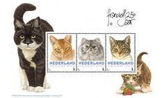 Postset Franciens katten 2