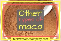 Amazing Black Maca Benefits and Uses – Feel Awesome Company Black Maca Benefits, Maca Root Powder, Lower Ldl Cholesterol, Plant Sterols, Natural Testosterone, Menopause Symptoms, Hormonal Changes, Thyroid Health, Endocrine System