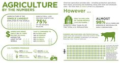 Agriculture By the Numbers (infographic)