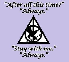 This pulls together two of the best book series ever in a beautiful fashion! I love the Hunger Games and Harry Potter! (the triangle, circle, and line are the Deathly Hallows and the bird well, we all know that is the Mockingjay)