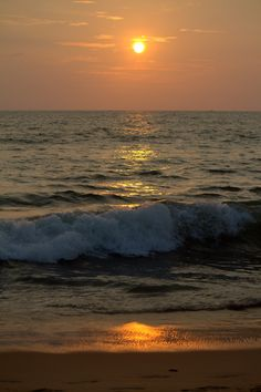 Watch the sunset at Negombo beach