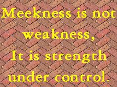 Blessed are the meek, for they shall inherit the earth.  Matthew 5:5 ESV