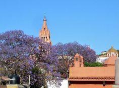 Villa Mirasol Hotel (San Miguel de Allende, Mexico) - Hotel Reviews - TripAdvisor