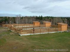 Individual horse turnout paddocks and run in shelters.