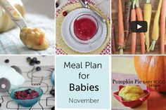 Meal Plan for Babies - November — Baby FoodE | organic baby food recipes to inspire adventurous eating