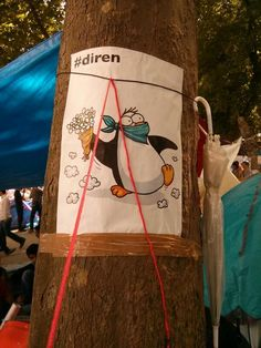 On a tree in Gezi. CNN Turkey aired penguin documentaries during 1st clashes & penguins became symbol of #occupygezi pic.twitter.com/XP145Y4M4m