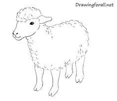 How to Draw Sheep & Lambs : Drawing Tutorials & Drawing & How to Draw Sheep & Lambs & Farm Animals Drawing Lessons Step by Step Techniques for Cartoons & Illustrations & Sketching Lamb Drawing, Sheep Drawing, Animal Sketches, Animal Drawings, Art Videos For Kids, Watercolor Paintings For Beginners, Sheep Art, Farm Art, Sheep And Lamb