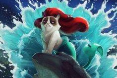 cat, Grumpy Cat, The Little Mermaid, Disney, Humor Wallpaper