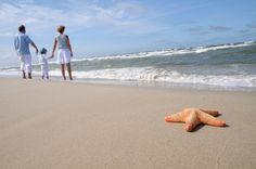 Ocean Isle Beach in NC features an abundance of natural beauty, wildlife…