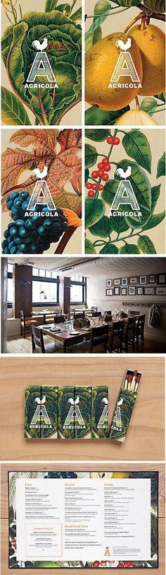 Agricola Restaurant Identity Designed by Mucca Design in Restaurant