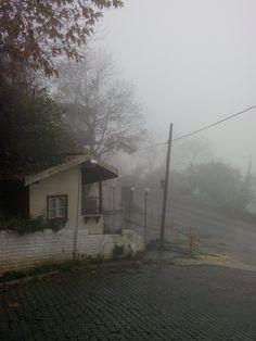 Fog uludag road