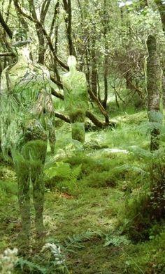 Instalação de silhuetas camufladas convida à reflexão sobre meio ambiente - Fotos - UOL Notícias
