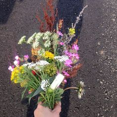 Hedgerow bouquets #instaflowers #halfterm #kidsactivities #wildtime