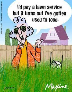 Maxine on lawn service