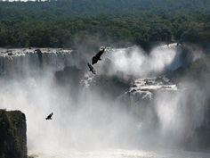 pino l - Brasile,Foz de Iguacu --Recensioni dell'utente - TripAdvisor