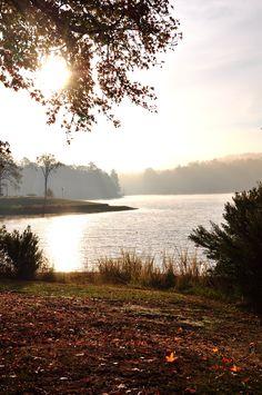 Lake Tyler, Texas   Serenity