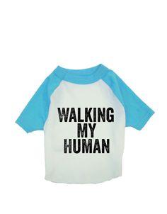Dog Baseball Shirt - Walking