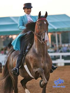 Love her coat!!  (Not to mention that gorgeous horse!)