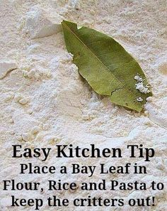 Bay leaf- I've always got one in my flour, keeps the flour weevils out!