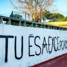TU ÉS a excepção ✅ #manhasperfeitasblog  #exception #tu #tués #youare #grafitti #oeiras #passeiomarítimodeoeiras #portugal_passion #igers #igersportugal #igerslisboa #seaside #portugalemcliques #portugalemclicks #juntoàpraia #passeio #promenade #walkaway #walking #justwalking #portugalcomefeitos #excepção #especial #serespecial #grafitar #escrever #frases #quotes #gravarnaparede