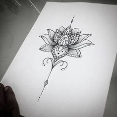 Image result for unalome lotus flower meaning                              …