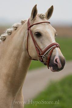 Premiera ''Monaco'' Cognac Rondgenaaid hoofdstel met wit onderlegde lak neusriem, zilveren fournituren Horse Bridle, Monaco, Equestrian, Creatures, Horses, Animals, Lak, Pony, Trains