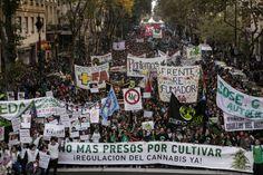 Argentina marcha por la regulación del cannabis medicinal | Internacional | EL PAÍS