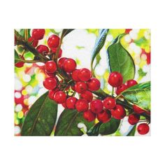 Color Pencil Drawing of Red Berries Canvas Print