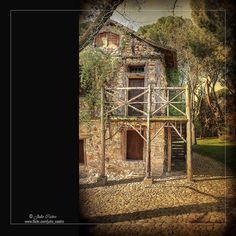 http://www.flickr.com/photos/45466128@N04/7095884119